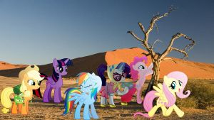 Mane 6 In The Desert by Macgrubor