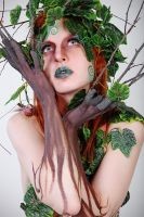Ivy II by vil-painter