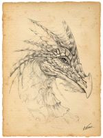 Dragon v.2 by Ksar