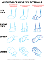 Lion Paw Tutorial by JustAutumn