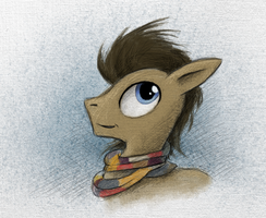 Doctor Whooves Scarf Portrait by Hewison