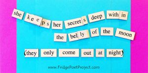 The Daily Magnet #211 by FridgePoetProject