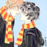 Ron X Harry by Lady-of-Flowers