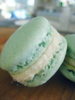 Vanilla Bean Macarons by TreeseRB