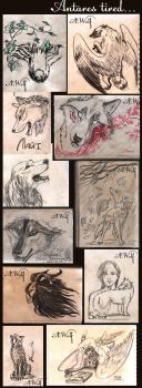 Evening of scetch requests by AntaresWolf