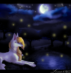 .:Starry night:. by lena8913