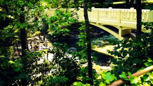 Minnopa Falls State Park 3 by simpspin