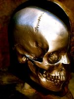 metal skull by squirt610