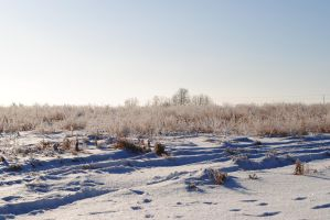 Winterscape 7 by TWO--GUNS
