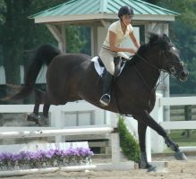 jump 15 by stockhorse