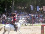 Jousting in the Wind by loverofbeauty