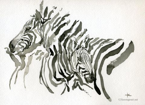 Zebra by Kerong