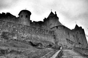 Carcassonne by 4mason