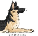 German Shepherd by ldefix