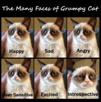 Emotions of Grumpy Kitty by lastchancelimited