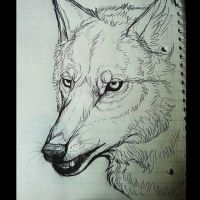 Wolf Pen Sketch by KahlaWolf