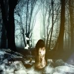 Lonely day in the woods | Photomanipulation by JeanSplashDesigns