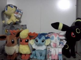 Pokemon Plushies by RakshaWw