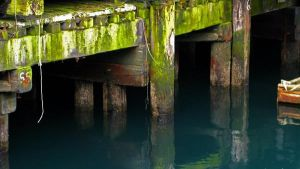 Seattle Dock 1 by Oxcudar