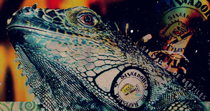 Salvador de Reptiles by danceinmyblood
