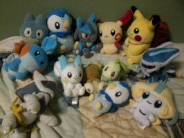 Pokemon Plush Sale 1 by SEGAMew