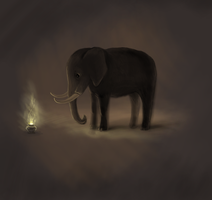 Curious Elephant by nino4art