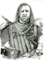 Sandor 'The Hound' Clegane by royalsmiley