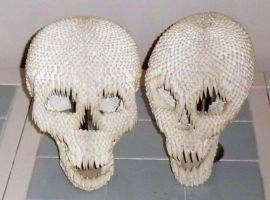 Skulls in 3d origami by dfoosdc