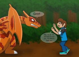 First encounter. Clone Charizard! by MipeLaz
