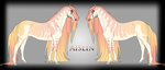 Aislin Ref by Drasayer