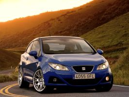 Seat Ibiza by AntVR6
