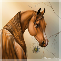 Horse2 by Alleria555