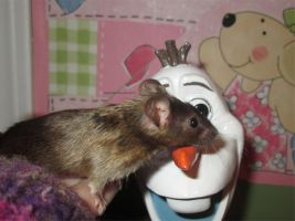 Even mice like Olaf by MaguschildCloud