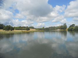 Petworth House and Park 067 by VIRGOLINEDANCER1
