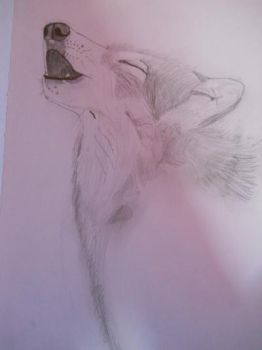Howling Wolf 1 by PsychNcisLostLover