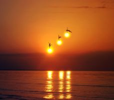 Do the dance of the sun by AMMozart