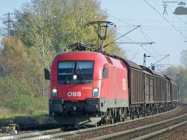 1116 011-6 w. freight in Gyor by morpheus880223