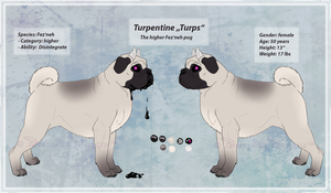 Turpentine reference 2013 by DesmodiaDesigns