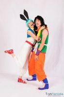 DragonBall~PLEASE SOMEBODY THIS GIRLS CRAZY by bandbutters