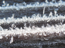 WoodFrost14C by Mandelscape