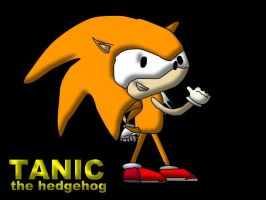 tanic the hedgehog by peturwems