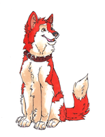 Red husky by Iguana-in-Darkness