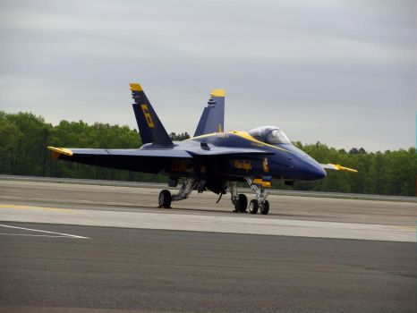 Blue Angels Grounded 2 by alucard07