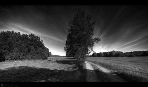 way to heaven bw by MarcoHeisler