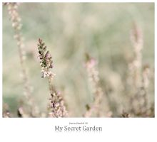 My Secret Garden by signmeupscotty