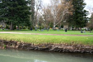 Rose Hill Cemetery 21 by Falln-Stock