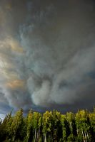 Forest Fire, Alaska by fourthwall