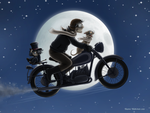 Moonlight ride by MacGreen