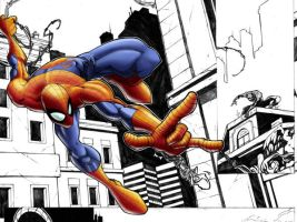 Spidey by GreatLP WIP by TheNass