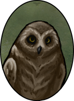 Portrait of an Owl by Bluecrow10